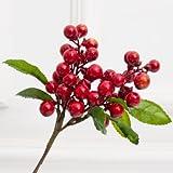 Fygrend Mini 2 Zweig Schaum kleine k¨¹nstliche Beeren Blume Simulation Obst for Take Requisiten Weihnachtsdekoration DIY Design-Blumen 11pcs [rot]