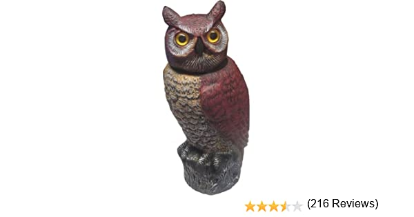 Superior Large Wind Action Spinning Turning Head Owls Bird Cat Pest Deterrent  Scarer: Amazon.co.uk: Garden U0026 Outdoors