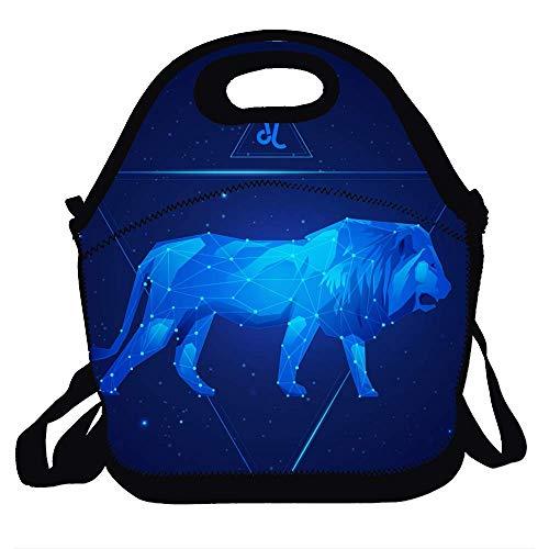 Lunch Bag Tote Handbag - Leo The Lion Lunch Bags for Women/Kids - Lunch Bag for Men - Lunch Bag