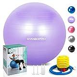 Palla da ginnastica/Palla Fitness,yoga palla equilibrio per fitness pilates palestra di yoga(65 cm,Viola)