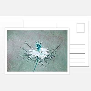 Design Fotokunst Postkarte Silent Moments 2017