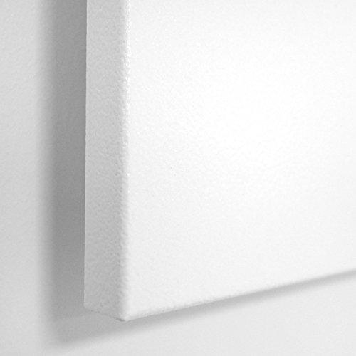 VASNER Citara Metall Infrarot-Heizung 450 Watt weiß 60x60cm, für Wandmontage – Deckenmontage, Sicherheitshalterung, deutsche Infrarot-Folie, Bad Glasheizung Flächenheizung Elektroheizung -