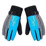 Gloves Ski Handschuhe Winddicht Regendicht Thermohandschuhe für Herren Damen Junge Kinder
