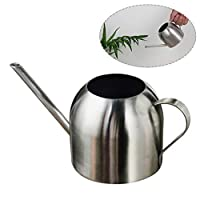 Ridecle 800ml Small Stainless Steel Watering Can with Long Spout, Bonsai Watering Can Pot for Indoor&Outdoor Home Office Desk Plants
