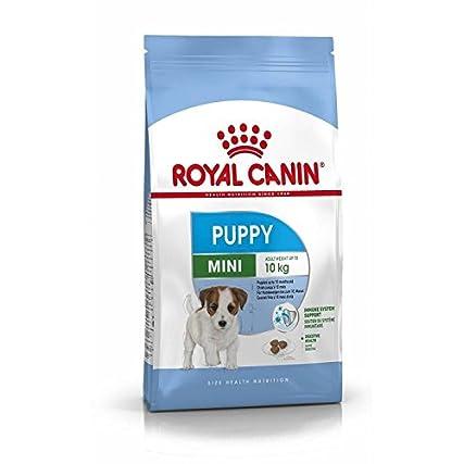 Royal Canin Mini Junior Cibo secco per cuccioli fino a 10 mesi, 4 Kg