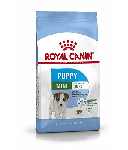 Royal Canin – Royal Canin Mini Junior