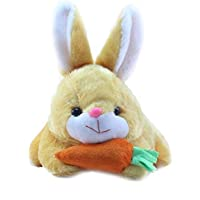 Deals India Beige Rabbit with Carrot Stuffed Soft Plush Toy- 26 cm, Beige