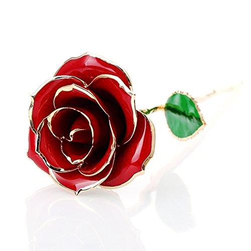 Preisvergleich Produktbild Schön Baby Pig Rosen 24 Karat Vergoldet Valentinstag Geschenke Rose Mit Schweiß Geschenkkasten box für Ewige Liebe und freund Geburtstag Muttertag Hochzeitsantrag Liebesgeschenk (Rot)