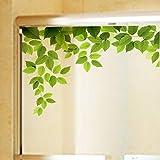 PVCOLL Fensterfolie GlasfoliePVC-Mattglas-Aufkleber-Großhandelsbalkon-Fenster-Glastür-Dekorativer Film D7060 Grünes Blatt-Lichtdurchlässiges Lichtdurchlässiges Klebemittel 60 * 58Cm