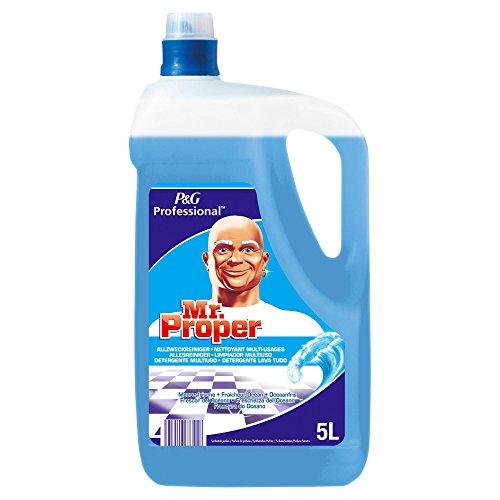 meister-proper-professional-meeresfrische-allzweckreiniger-2-x-5-liter