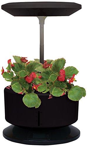 Tecno Air System gardenm-n Garden Machine, noir, 32 x 21 x 82 cm