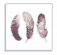 "Evans Lichfield Feather Feathers Dusky Pink White Canvas Wall Art Picture 16"" from Evans Lichfield"