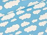 Swafing Baumwolljersey Verena Wolken weiß auf Hellblau