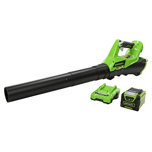 Imagen de Soplador de Hojas Greenworks Tools por menos de 150 euros.