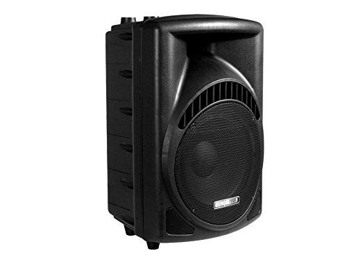 PA-Lautsprecherbox Profi 12\'\' 450W max. 2 Wege mit Schutzgitter