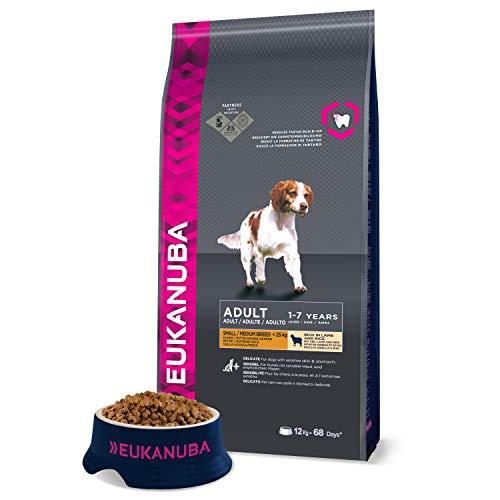 Eukanuba - Croquettes Premium Chiens Adultes Petits à Moyens - Digestion sensible - 100% Complète et Equilibrée - L-Carnitine - Sans OGM conservateur arôme artificiel - Riche en Agneau et Riz - 12kg