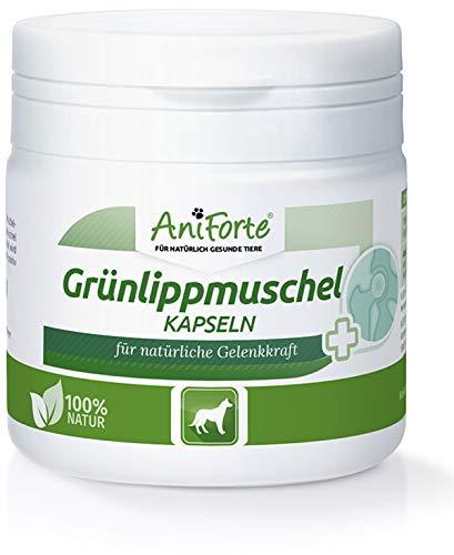 AniForte Grünlippmuschel-Kapseln 100 Stück für Hunde, Reines Grünlippmuschel-Extrakt Perna Canaliculus, Muschel-Extrakt, Aktiv Gelenk-Tabletten unterstützt Gelenk-Kraft und Gelenke, Ohne Zusätze