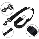 Dog Seat Belt, Carryme Pet Dog Cat Safety Adjustable Leash Straps Leads Universal Car Vehicle Harness Restraint Shock Absorbing Elastic Bungee Buffer Nylon Seat Belt, Black