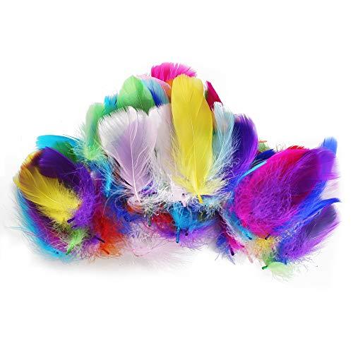 astelfedern 300 Stück Dekofedern zum Basteln Federn für Traumfänger DIY Hochzeit Party Dekoration Sicher Ungiftig und Nicht Verblassen 8-15cm 10 Farben ()