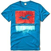 Hollister para hombre Graphic Logo T Shirt