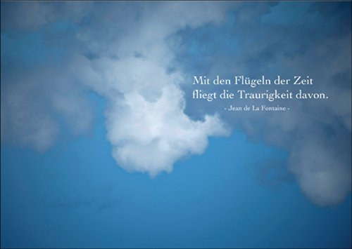 Tröstende Trauerkarte: Mit den Flügeln der Zeit fliegt die Traurigkeit davon • auch zum direkt Versenden mit ihrem persönlichen Text als Einleger.