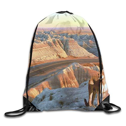 uykjuykj Drawstring Bag Canyon Cat Badlands Gym Hiking Travel Designer Color 07 Lightweight Unique 17x14 IN (Badland-räder)