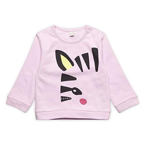 ESPRIT KIDS Baby-Mädchen Sweatshirt, Rosa (Blush 310), (Herstellergröße: 92) Baby-sweatshirt