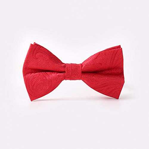 WOXHY Paisley Krawatte Polyester Jacquard Herren Business Krawatte Anzug Krawatte Für Männer Rot Bowtie Hochzeit Mode Bogen Rote Paisley Bowties