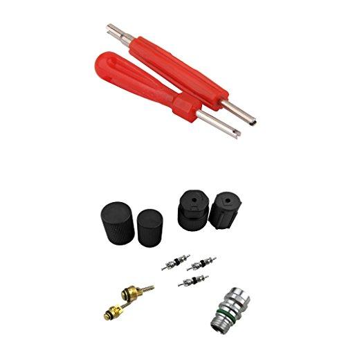 Gazechimp 12 x Klimaanlage Ventile Ventileinsatz Reparatur mit Ventilentferner für Auto KFZ PKW