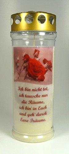 Grablicht-Kerze 20*7 cm - Rose Rot -3760 - Ich bin nicht tot... - ca. 7 Tage Brenndauer – Grabkerze mit Motiv und Spruch - Trauerkerze mit Foto und Spruch