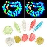 10 Stücke Leucht Steine Conch Muscheln Seestern Dekorative Leucht Kieselsteine