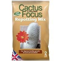 Growth Technology Ltd MDCAF2 Cactus Focus Repotting Mix 2 Litre