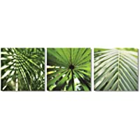 Set di 3 tele artistiche, con motivo di foglie tropicali verdi