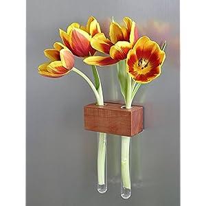 Kühlschrankmagnetvase Apfel 2er Blumenvase