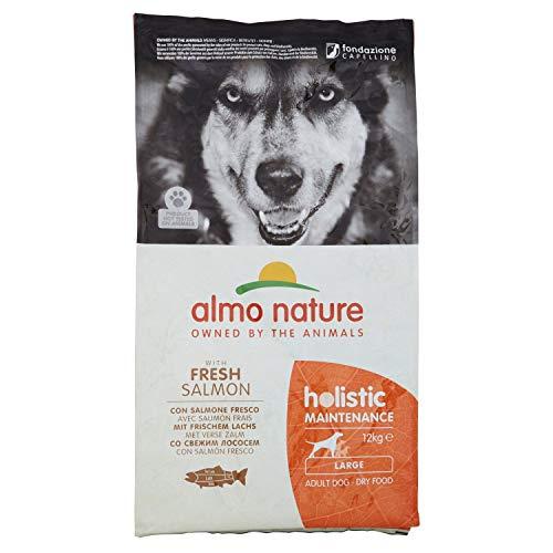 Almo Nature - Holistic - Croquettes pour chien - Saumon/riz - 12 kg