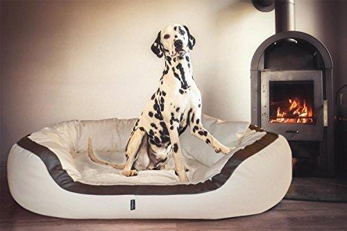 tierlando® PEPPER Orthopädisches Hundesofa in Kunstleder | 13cm mächtige Matratze VISCO | XXL-Kuschel-Rand | Creme 160cm XXL | Anti-Haar | Formstabil