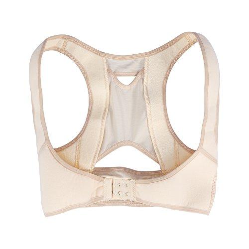 Filfeel Haltung Korrektor, unsichtbare Wirbelsäule Unterstützung Gürtel Orthese Korsett Orthopädische Taille Schulterstütze Rückenstütze Gürtel für Damen Studenten(L) - Haltung Unterstützung Korrektor