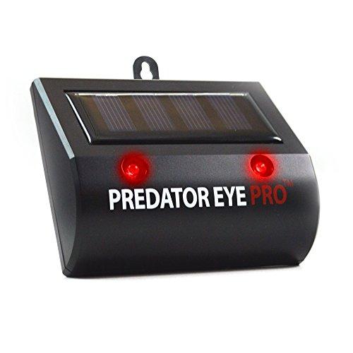 ORIGINAL Aspectek Predetor Eye PRO, MARDERSCHRECK, VOGELSCHRECK, Räubtier u. Fressfeind LED Augen zum ABSCHRECKEN VÖGEL, WILDTIERE, KATZEN, MARDER, HIRSCHE u. MÄUSE für GARTEN, BALKON u. ()