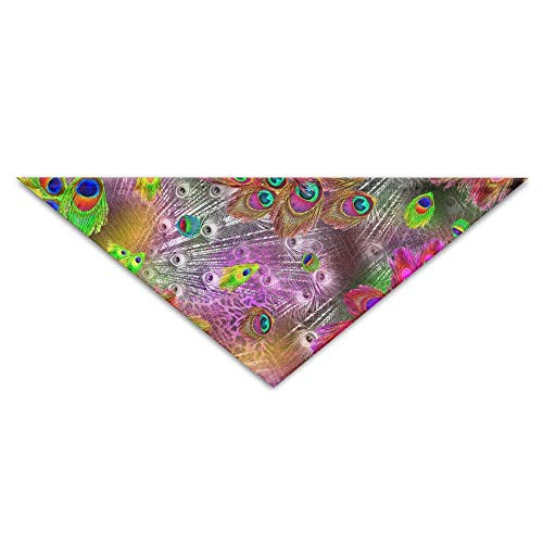 Gxdchfj Abstract Colorful Peacock Feather Triangle Pet Scarf Dog Bandana Pet Collars for Dog Cat - ()