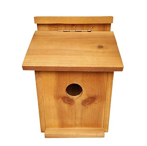 Galleria fotografica Bestok Uccelli Nidi Casa Scatola di Legno per Passero Pappagallo Pettirosso Cinciarella Piccolo Uccelli Selvaggi