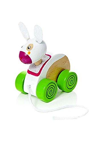 Tradicional juguete para arrastrar en forma de perro de juguete de madera
