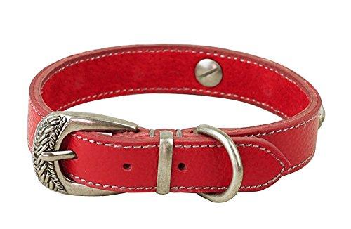 zeey-pelle-morbida-formazione-collare-regolabile-per-cani-del-collo-da-29-a-37-cm-e-2-centimetri-lar