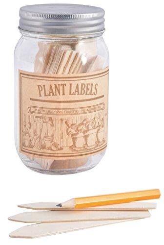 Fallen Fruits Étiquettes en bois pour plantes dans un pot