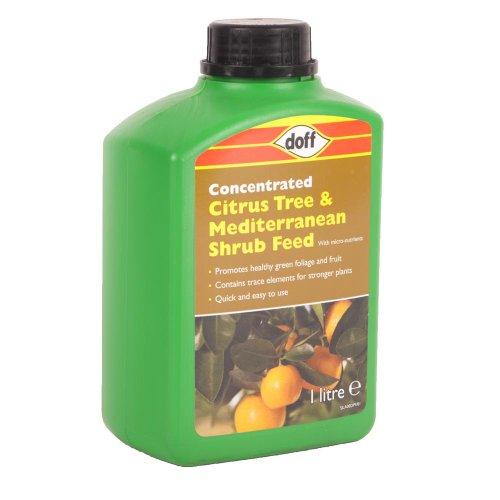 doff-citrus-tree-food-and-mediterranean-shrub-garden-feed-1-litre