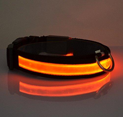 Dogsie leuchtendes LED Hundehalsband / Leuchthalsband in M,L,XL / verschiedene Farben / leuchtend oder blinkend / Halsband (L, Rot) - 2