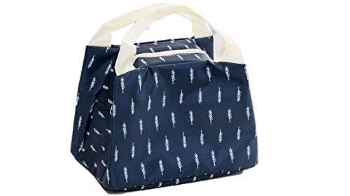 INSTABUYZ Insulated Double Zipper BPA Free Lunch Bag, 4L, Medium (Orange)