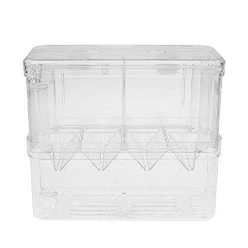perfk Aquarium Fisch Zucht-Tanks Brutkasten Isolation Inkubator Box, transparent