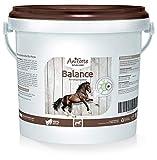 AniForte Balance Beruhigungskur 1 kg für natürliche Beruhigung- Naturprodukt für Pferde