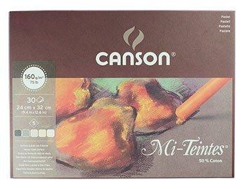Canson : Mi-Teintes : Pastel Pad : 24x32cm : 30 Sheets : Earth Tones -