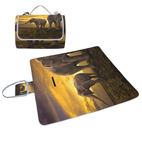 COOSUN - Manta de picnic con diseño de elefantes de la familia...